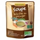 Soupe aux Légumes du Potager