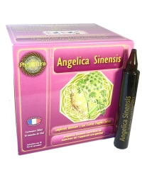 Angelica sinensis 300ml