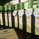 Huile d'Olive Cobrançosa