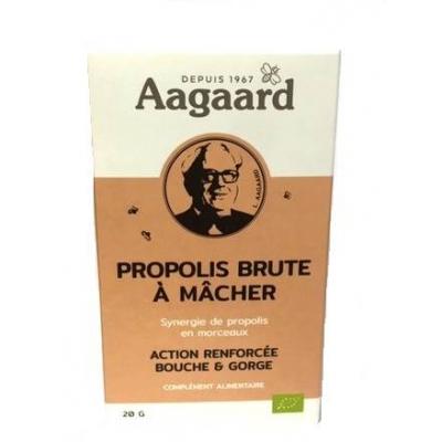 Propolis Brute à Mâcher