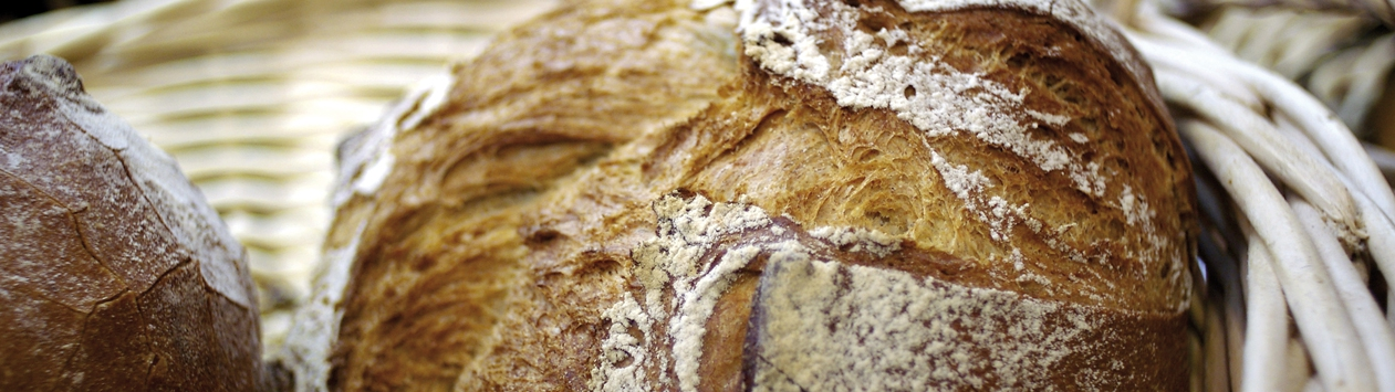 Notre sélection de pains bio